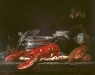 lobster-still-life2.jpg