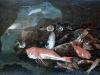 natura-morta-con-pesci-e-ostriche.jpg